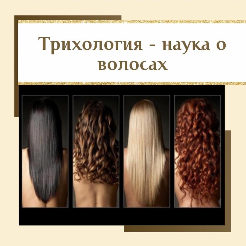 Трихология: мифы и интересные факты о волосах, изображение №1