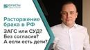 Основания и порядок расторжение гражданского брака в России