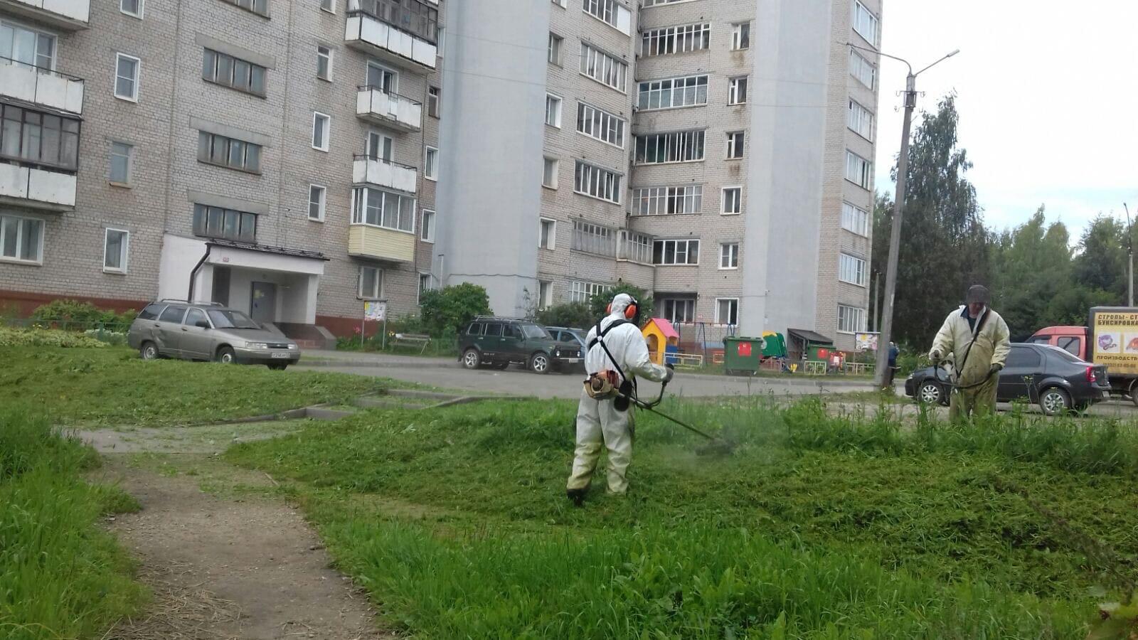 Ул. Ломоносова, 18. Кошение газонов.