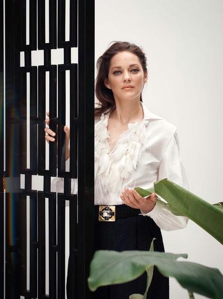 Красавица Марион Котийяр в фотосессии для октябрьского номера Harper's Bazaar