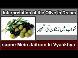 Interpretation of the Olive in Dream Munajat    Khwab Mein Zaitoon Dekhna    خواب میں زیتون دیکھنا