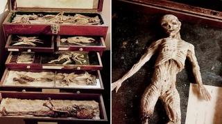 Загадка кошмарной коллекции Томаса Меррилина, путешественника во времени!