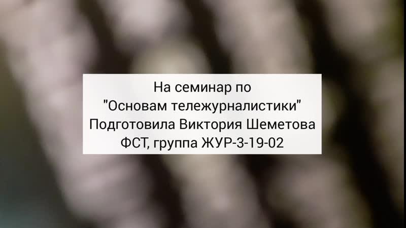 Имидж телеведущего Шеметова Вика ЖУР 3 19 02