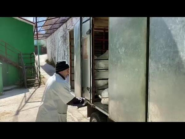 Предприятие КрымХлеб пришло на помощь Сказке и Тайгану СПАСИБО ВАМ ДРУЗЬЯ