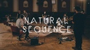 Natural Sequence - Dark Fades / Waves Live Session Fairlane acoustic