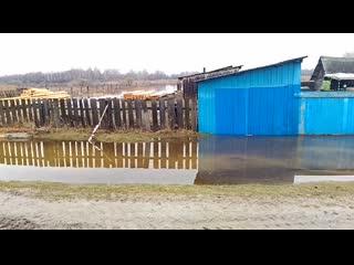 Паводок начался в Тюменской области раньше обычных сроков