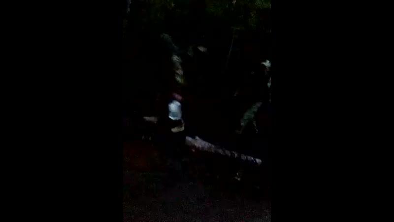 Саля малейкум русские Кадыровцы на Шиесе Силовые структуры стянуты билеты на поезд до с