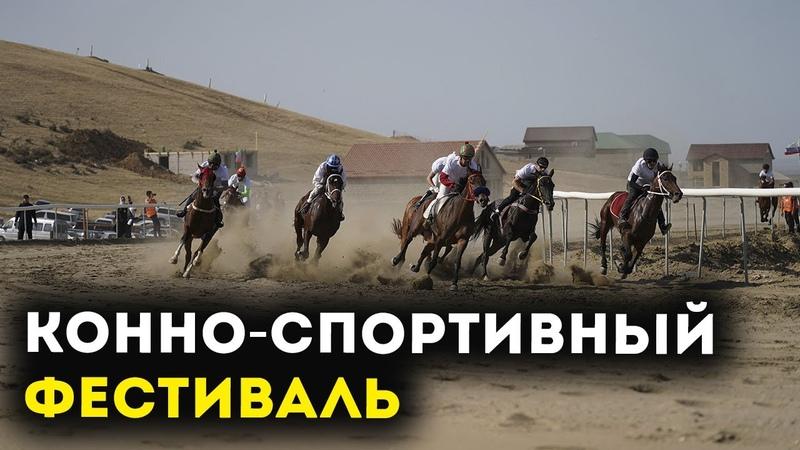 Дагестанцы отметили День народного единства конно спортивным фестивалем