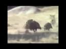 обезьяны убегают на кабане, неуловимые мстители