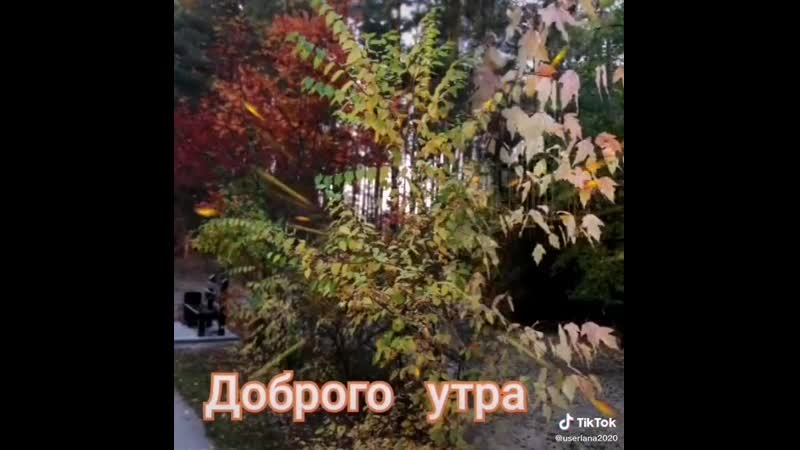 VIDEO 2020 10 12 08 19