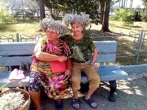 Кто хочет вылечить свою потенцию Есть секрет Бабка лечит травой Поебень