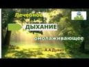 Лечебное дыхание, которое омолаживает и продлевает жизнь. Андрей Дуйко. Путь к себе через эзотерику.