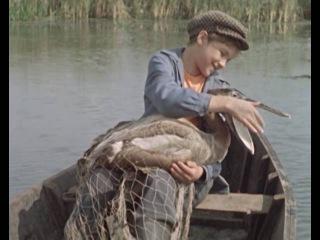 Слепая птица 1963 (ЦентрНаучФильм)