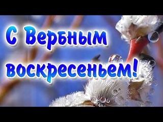 С Вербным Воскресеньем  Видео поздравление