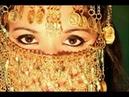 Yasar Akpence Last harem Darbuka Solo BELLY DANCE 2 wmv
