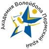 Академия волейбола Пермского края