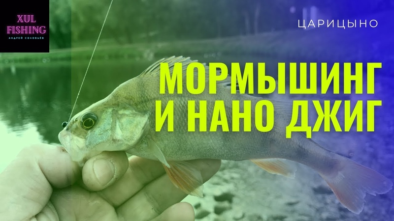 Мормышинг и Нано джиг в Московском парке Окунь на каждом забросе