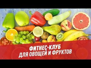 Фитнес-клуб для овощей и фруктов — Хочу всё знать