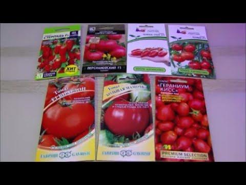 Великолепные суперранние и низкорослые очень урожайные томаты для особой ранней грядки