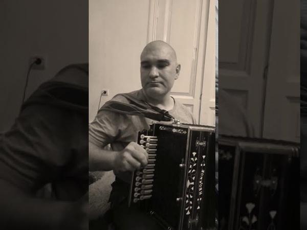 Думы окаянные Русский городской романс под Нижегородскую Гармонь М Волкова
