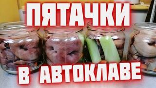 ПЯТАЧКИ в автоклаве  Свиные пятаки в автоклаве   Домашние консервы в автоклаве