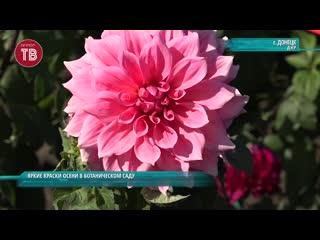 Яркие краски осени в Ботаническом саду. Экспозиция Мексика