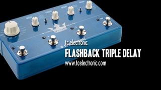 tc electronic: FLASHBACK TRIPLE DELAY - Demo