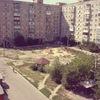 Типичный двор Александрии :D