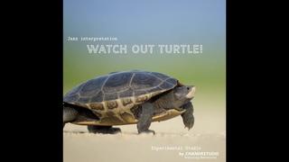 Watch Out Turtle  - (Chandrstudio feat. Valerii Maslov feat. Bensound)