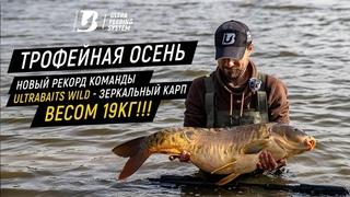 ТРОФЕЙНАЯ ОСЕНЬ. Новый рекорд команды Ultrabaits Wild - зеркальный карп весом 19кг!!!