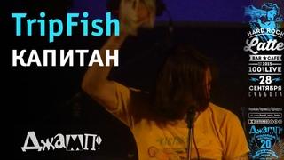 TripFish - Капитан Live