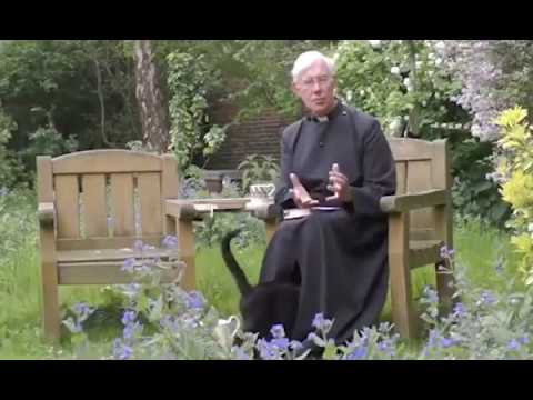 Vicar where's your pussy Hilarious moment cathedral cat disappears inside the Dean of Canterbury's
