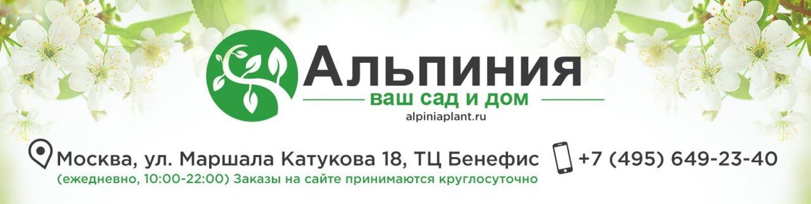 интернет магазин семян недорого почтой