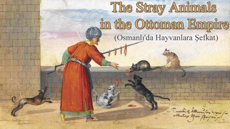 Osmanlıda Hayvanlara Şefkat (The Stray Animals in the Ottoman Empire)
