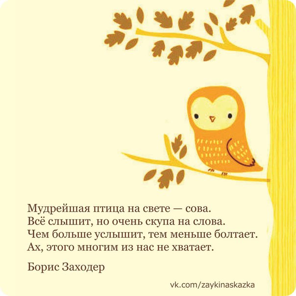 подарок сова стихи маленьких