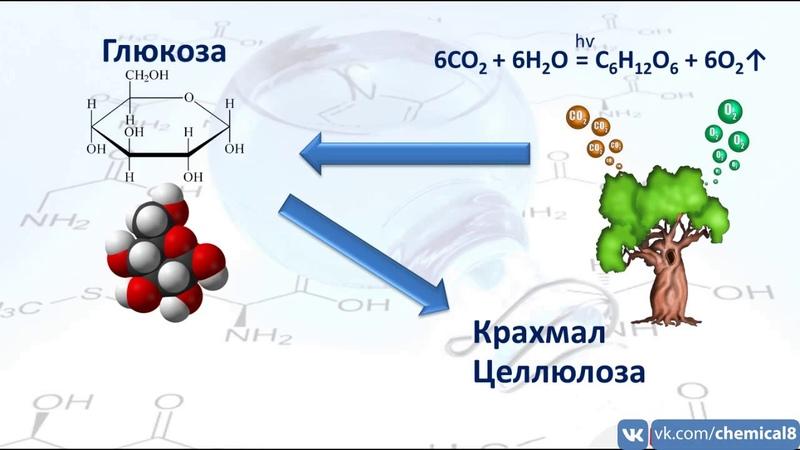 Предмет органической химии. Теория химического строения органических соединений А. М. Бутлерова