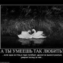 Персональный фотоальбом Инки Головко