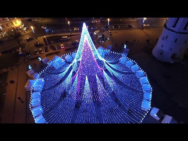 Sostinės Katedros aikštėje įžiebta Kalėdinė eglutė