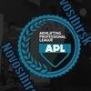 Профессиональная лига армлифтинга(APL) NOVOSIB