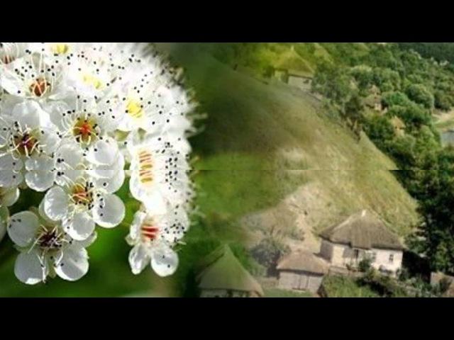 Час рікою пливе | Українські пісні слухати