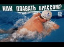 Как правильно плавать брассом Данил Антоненков