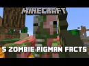 Minecraft 5 Zombie Pigman Facts You Might Not Know
