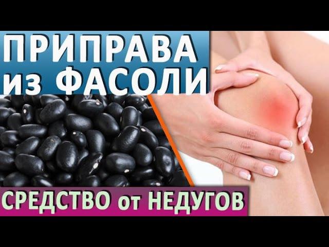 Приправа из чёрной фасоли Профилактика недугов