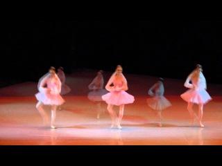Медузы из балета Конек Горбунок