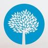 TreeNetWorks | Розробка сайтів | SMM | SEO