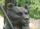 На Кирова появился 700 килограммовый медведь