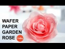 Wafer Paper Rose Step by Step Cake Decorating Tutorial with Stevi Auble