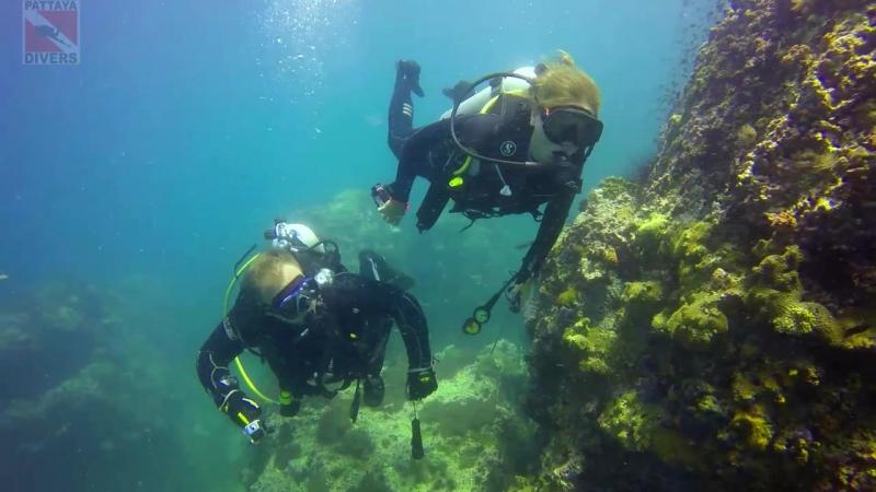 Подводные скалы Hin Pae под островом Koh Ngam Yai Дайвинг ПАТТАЙЯ ЧУМПХОН