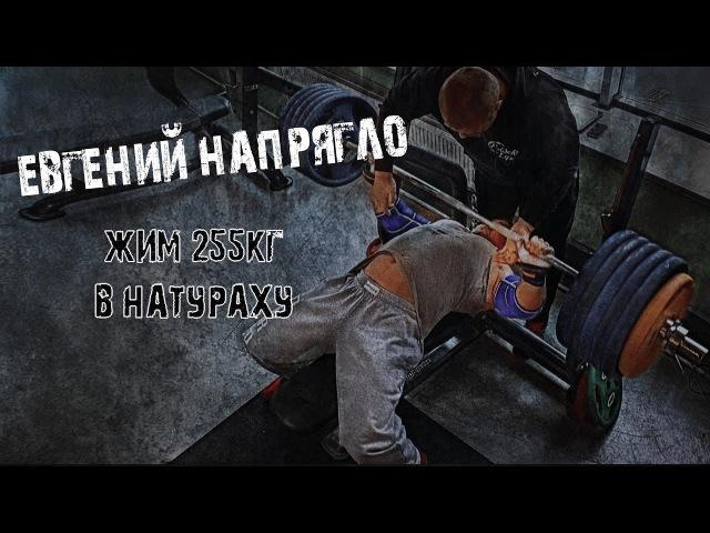 Евгений Напрягло жим 255кг в натураху