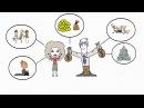 Создание рисованного видео для бизнеса на заказ ☯ Рисованный ролик группы Вкон